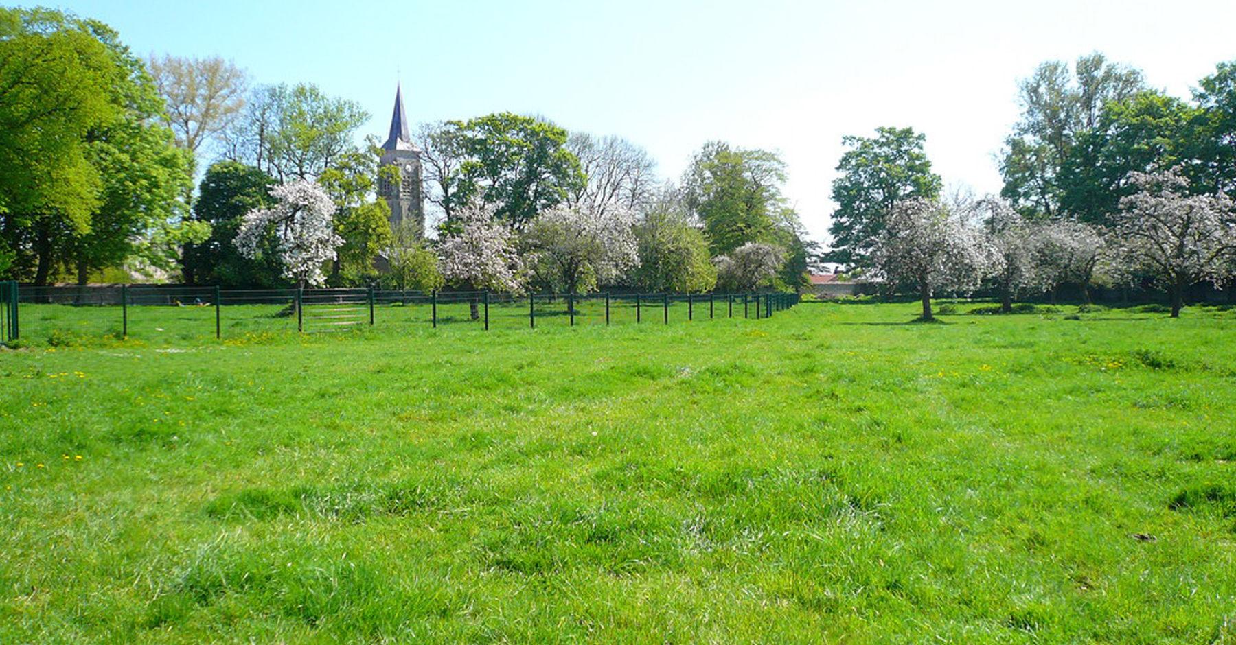 Acheter un terrain foncier en 6 tapes for Acheter un terrain pour construire